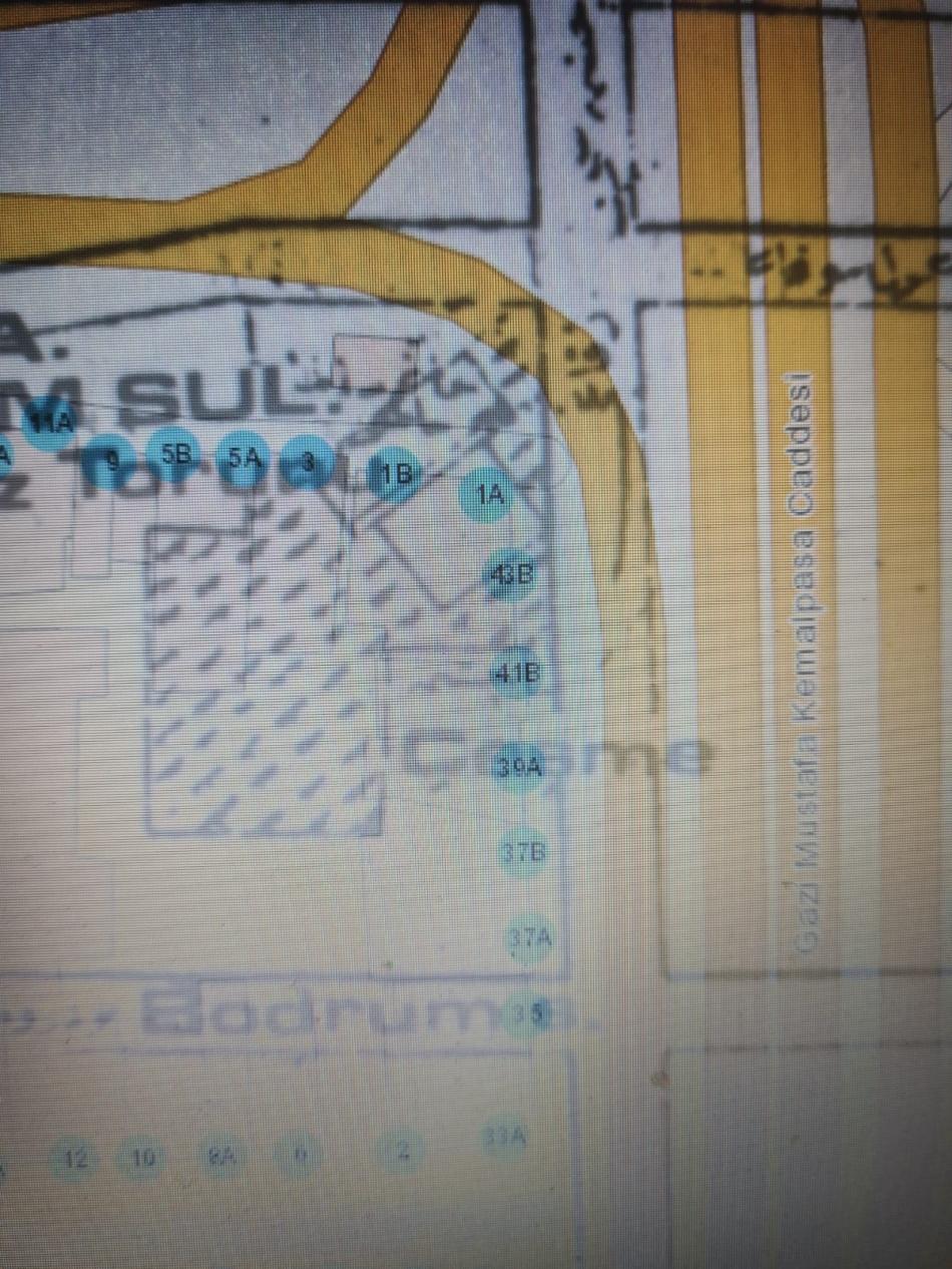 2021/06/1623076343_sultan_-1.jpg