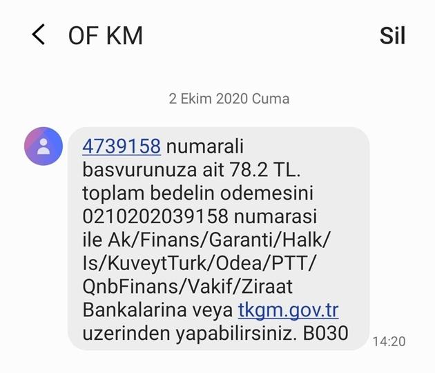 7164431.jpg
