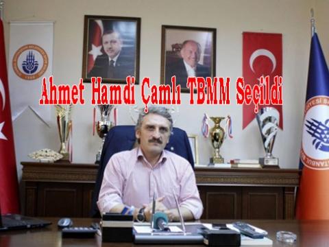 Ahmet Hamdi Çamlı 1 Kasımda TBMM'inde