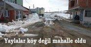 Karadeniz yaylalarında Yıkım Fırtınası